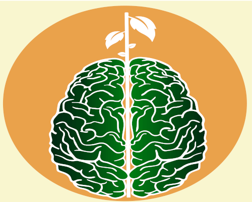 BRAINSPROUTS